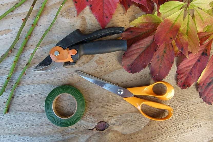 Růže z barevného podzimního listí: Co budete potřebovat