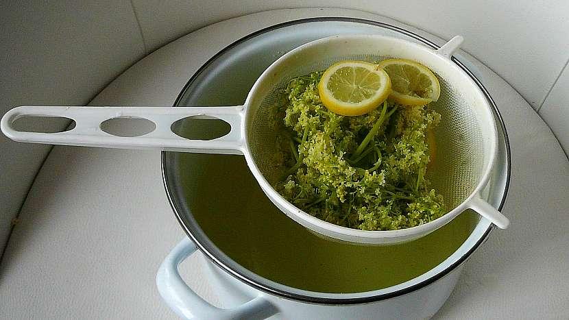 Jak udělat z čerstvých bezových květů sirup, ocet nebo čaj 5