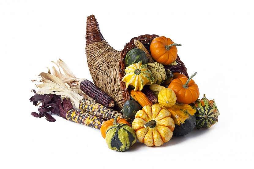 Podzim můžeme díky sklizním a zrání plodin přirovnat ke skutečnému rohu hojnosti. Využijte tyto dary k podzimním dekoracím truhlíků