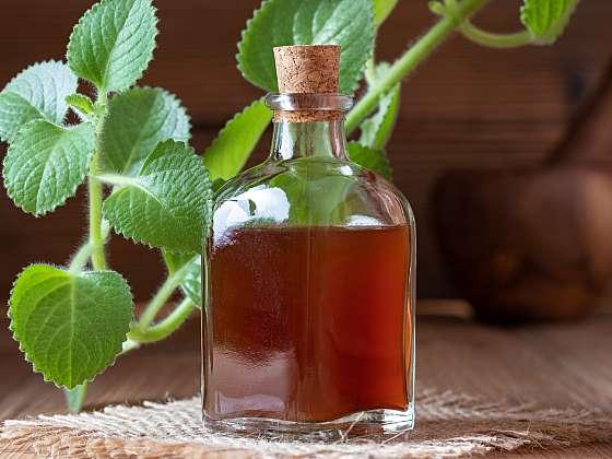 Rýmovník je všestranná bylinka, kterou si zamilujete (Zdroj: Depositphotos)