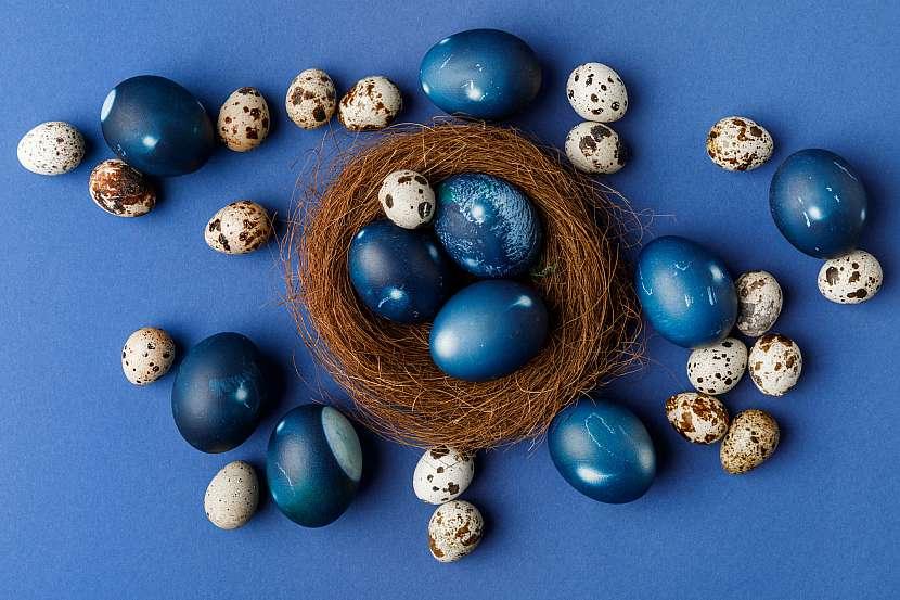 Modrá vejce