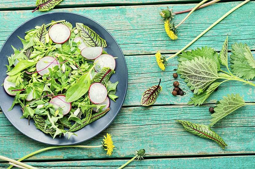 Jitrocel v salátu
