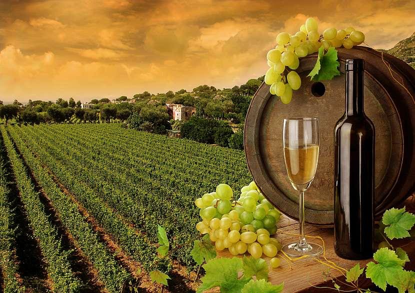 Kraj s vinicemi