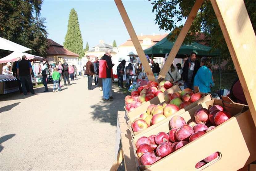 Kam na výlet: Jablka a jablečné speciality můžete 2