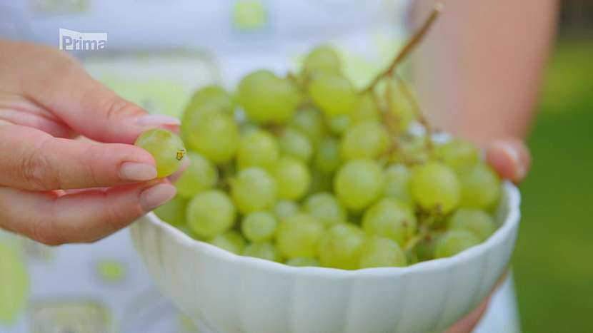 Kuličky hroznového vína pro psy vhodné nejsou
