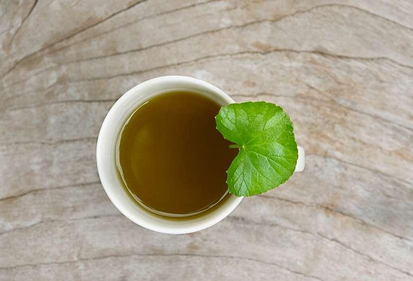 Čaj z pupečníku pijte 3× denně