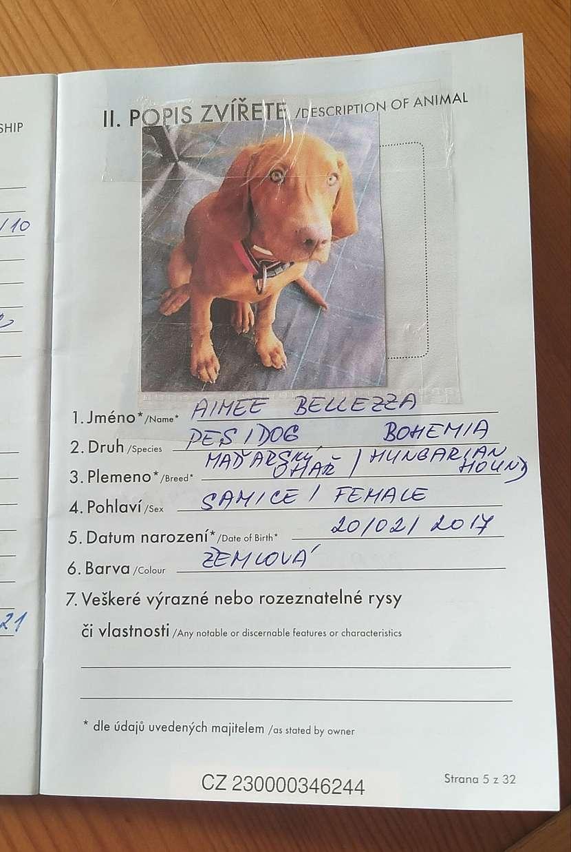 Popis a foto zvířete