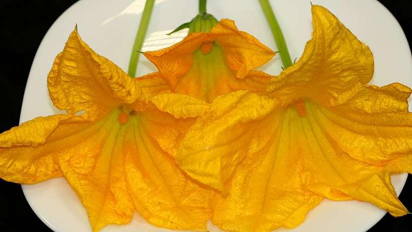 Sezona cuket: čerstvé květy mají lehce projímavé účinky