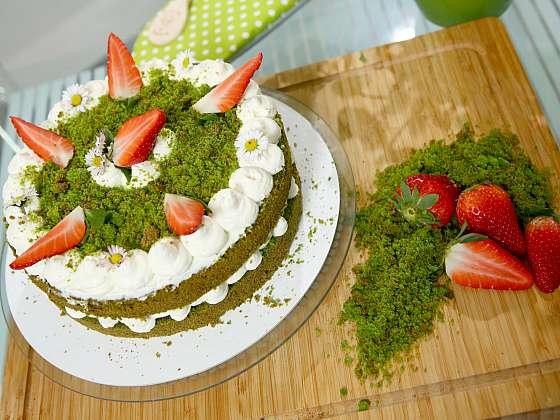 Mechový dort padne do noty každému, vyzkoušejte náš recept (Zdroj: Archiv FTV Prima, se svolením FTV Prima)