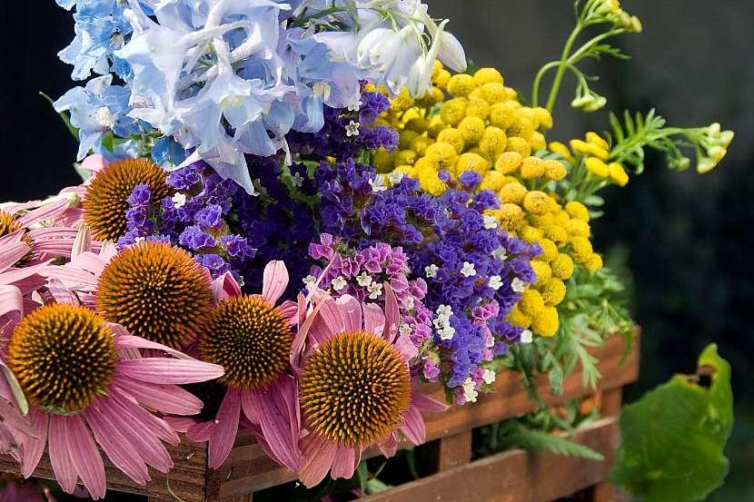 Květiny ksušení v bedýnce